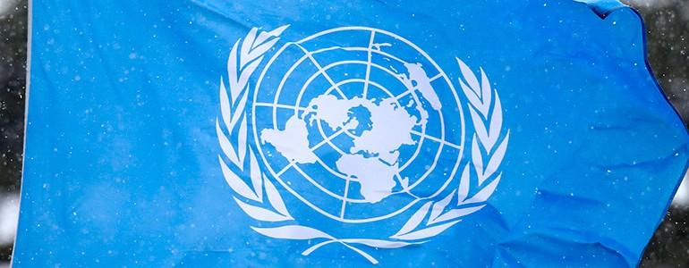 A Scienze politiche si parla di ONU